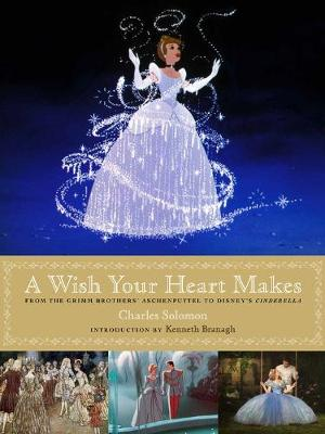 A Wish Your Heart Makes: From the Grimm Brothers' Aschenputtel to Disney's Cinderella (Hardback)