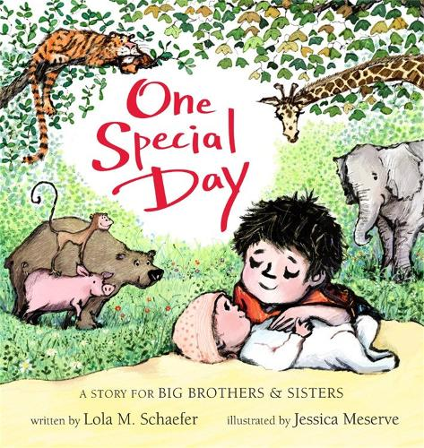 One Special Day: A Story for Big Brothers and Sisters (Board book)