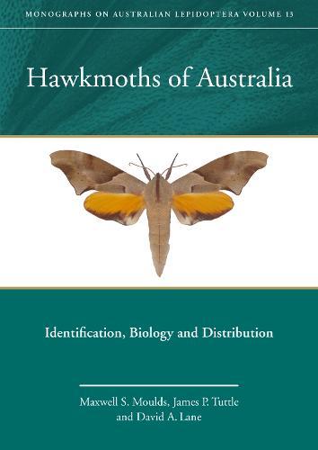 Hawkmoths of Australia: Identification, Biology and Distribution - Monographs on Australian Lepidoptera 13 (Hardback)