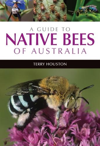 A Guide to Native Bees of Australia (Paperback)