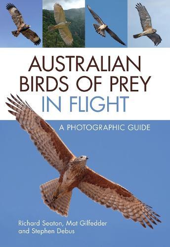 Australian Birds of Prey in Flight: A Photographic Guide (Paperback)