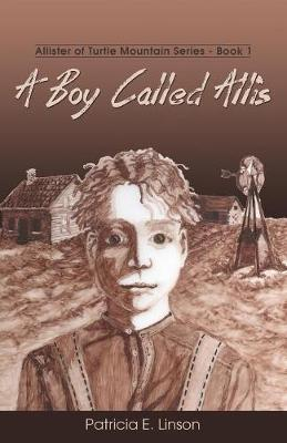 A Boy Called Allis: Allister of Turtle Mountain Series - Allister of Turtle Mountain 1 (Paperback)