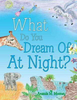 What Do You Dream of at Night? (Paperback)