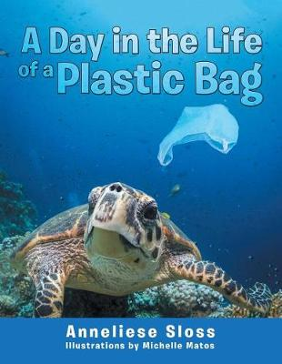 A Day in the Life of a Plastic Bag (Paperback)