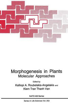 Morphogenesis in Plants: Molecular Approaches - NATO Science Series A 253 (Paperback)