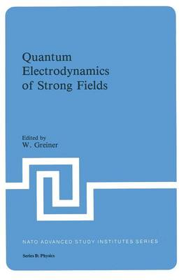 Quantum Electrodynamics of Strong Fields - NATO Science Series B 80 (Paperback)