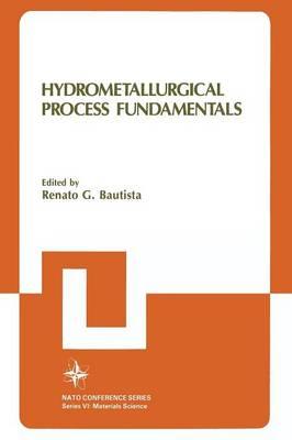 Hydrometallurgical Process Fundamentals: Hydrometallurgical Process Fundamentals Materials Science Pt.VI - VI Materials Science 10 (Paperback)