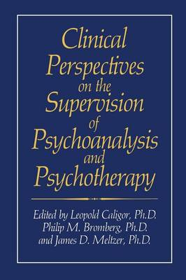 Clinical Perspectives on the Supervision of Psychoanalysis and Psychotherapy - Critical Issues in Psychiatry (Paperback)