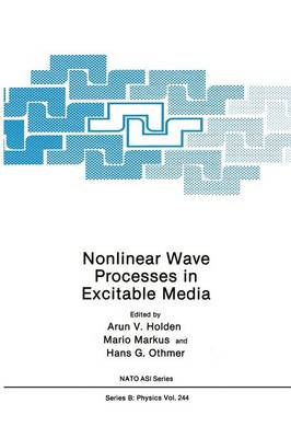 Nonlinear Wave Processes in Excitable Media - NATO Science Series B 244 (Paperback)