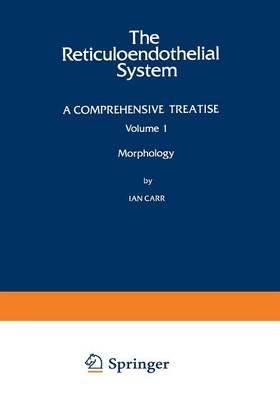 Morphology (Paperback)