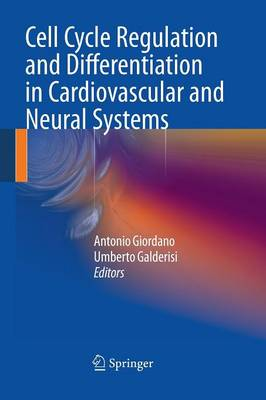 Cell Cycle Regulation and Differentiation in Cardiovascular and Neural Systems (Paperback)
