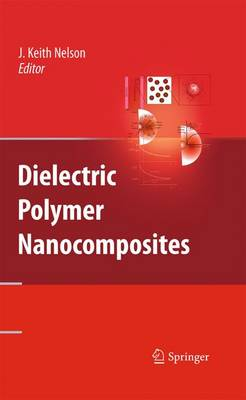 Dielectric Polymer Nanocomposites (Paperback)