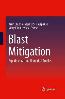 Blast Mitigation: Experimental and Numerical Studies (Paperback)