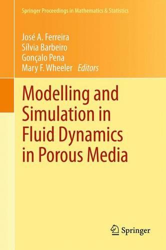Modelling and Simulation in Fluid Dynamics in Porous Media - Springer Proceedings in Mathematics & Statistics 28 (Paperback)