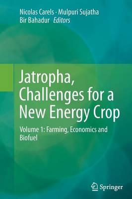 Jatropha, Challenges for a New Energy Crop: Volume 1: Farming, Economics and Biofuel (Paperback)
