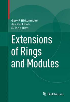 Extensions of Rings and Modules (Paperback)