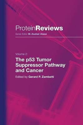 The p53 Tumor Suppressor Pathway and Cancer - Protein Reviews 2 (Paperback)