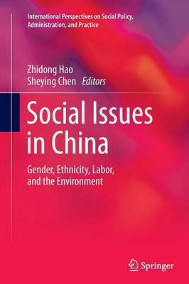 Social Issues in China: Gender, Ethnicity, Labor, and the Environment - International Perspectives on Social Policy, Administration, and Practice 1 (Paperback)