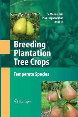 Breeding Plantation Tree Crops: Temperate Species (Paperback)