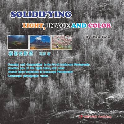 Solidifying Light, Image and Color (Paperback)