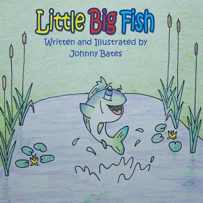 Little Big Fish (Paperback)