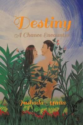 Destiny: A Chance Encounter (Paperback)