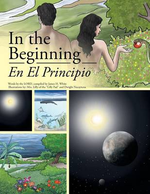 In the Beginning (Paperback)