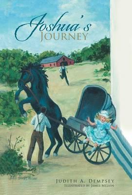 Joshua's Journey (Hardback)