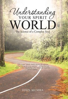 Understanding Your Spirit World: The Science of a Complex Soul (Hardback)