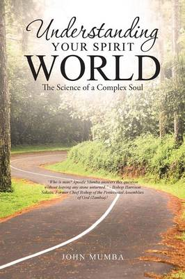 Understanding Your Spirit World: The Science of a Complex Soul (Paperback)