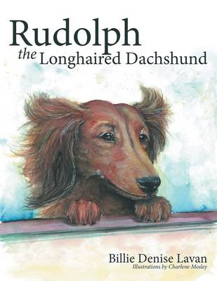 Rudolph the Longhaired Dachshund (Paperback)