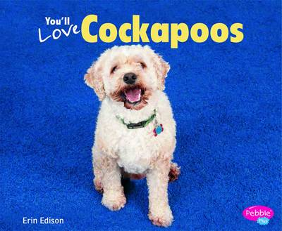 You'll Love Cockapoos - Designer Dogs (Paperback)