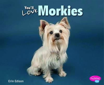 You'll Love Morkies - Designer Dogs (Paperback)