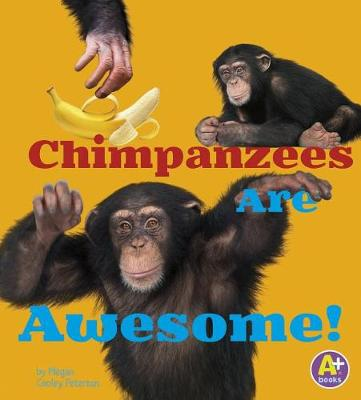 Chimpanzees - Awesome African Animals (Paperback)