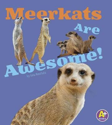 Meerkats Are Awesome! - Awesome African Animals (Paperback)