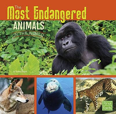 All About Animals: Most Endangered - All About Animals (Paperback)