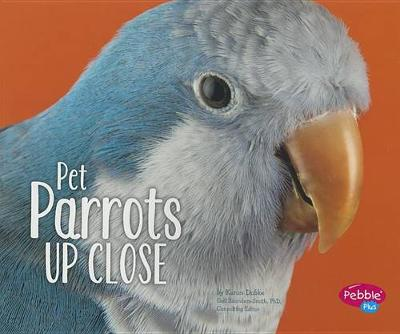 Pet Parrots Up Close - Pets Up Close (Paperback)
