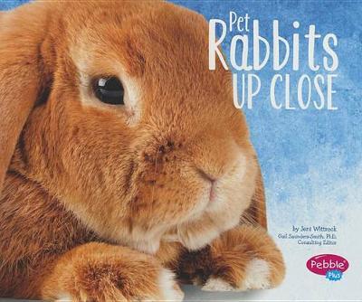 Pet Rabbits Up Close - Pets Up Close (Paperback)