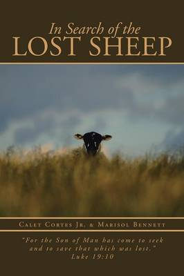 In Search of the Lost Sheep: For the Son of Man Has Come to Seek and to Save That Which Was Lost. Luke 19:10 (Paperback)