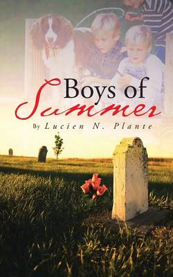 Boys of Summer (Paperback)