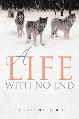 A Life with No End (Paperback)