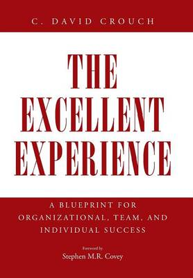 The Excellent Experience: A Blueprint for Organizational, Team, and Individual Success (Hardback)