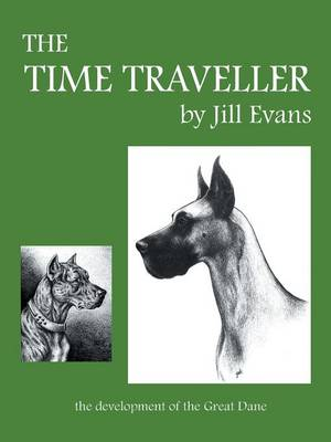 The Time Traveller (Paperback)