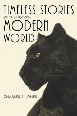 Timeless Stories of the Not-So-Modern World (Paperback)
