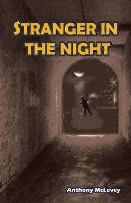 Stranger in the Night (Paperback)