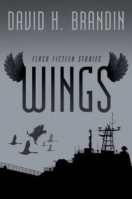 Wings: Flash Fiction Stories (Paperback)