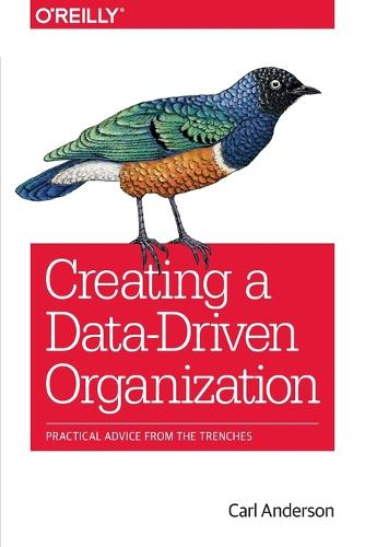 Creating a Data-Driven Organization (Paperback)