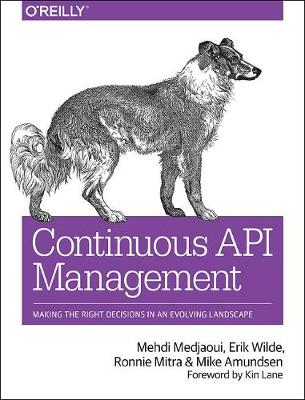 Continuous API Management: Make the Right Decisions in an Evolving Landscape (Paperback)