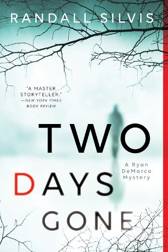 Two Days Gone - Ryan DeMarco Mystery (Paperback)