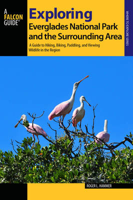 Exploring Everglades National Park and the Surrounding Area: A Guide to Hiking, Biking, Paddling, and Viewing Wildlife in the Region - Exploring Series (Paperback)